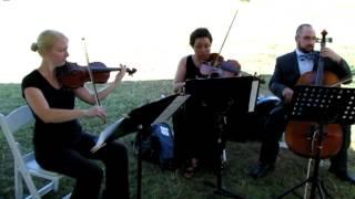 Robyn James Ensembles - Shipping Up To Boston Cover - Dropkick Murphys