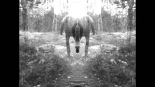 The Green Ark - Dub A Song (Official Dub Video)