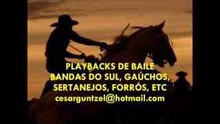 PLAYBACKS BANDAS DO SUL - playback de bandinha