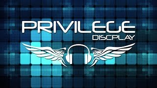 Video Demo Privilege Discplay