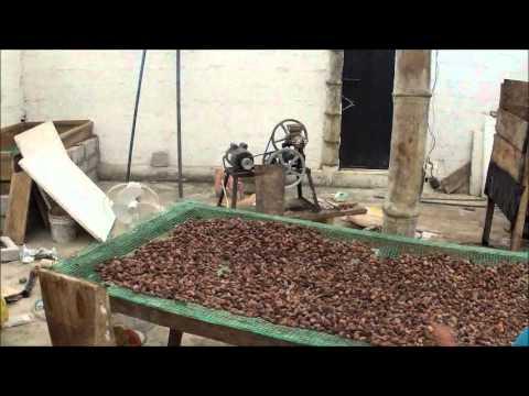 Chocolate Processing Area on Finca (farm) in Santo Domingo Ecuador