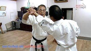 Secrets of karate. Bunkai
