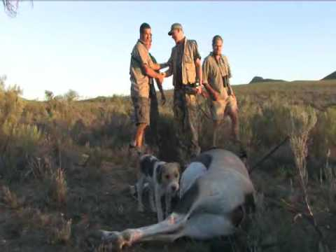 Jakt i Sør Afrika Western Cape