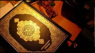 Hafiz Aziz Alili - Kur'an Strana 247 - Qur'an Page 247