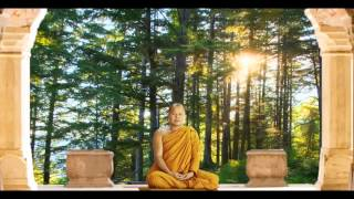 Meditation 101 Visualization with a Buddha and Solar Aura Presence