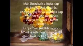 Jó reggelt  -  szép napot kívánok...szeretettel
