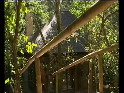 Trogon House and Forest Spa – Treetop accommodation close to Plettenberg Bay
