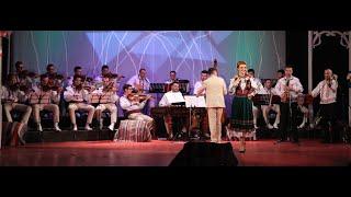 Simona Costin si Orchestra Lautarii din Ardeal - Frunza verde si una (Live 2016)