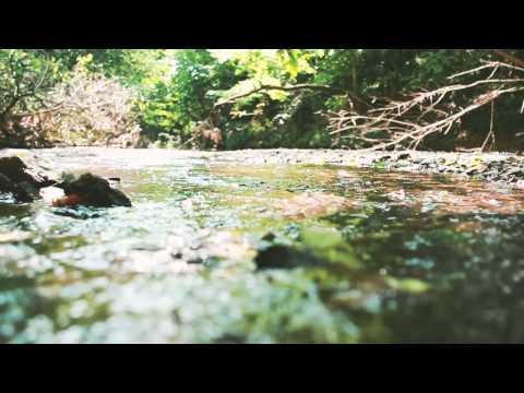 lou-barlow-boundaries-album-audio-only-joyful-noise-recordings