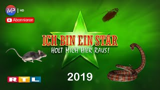 Dschungelcamp 2019 | Song by HUGEL feat. Amber Van Day - WTF | 4K Premium Edition