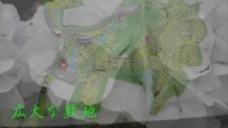 'S  Wonderful~ 森山良子(Cover)