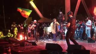 Pitbull ft Stephen Marley - Options LIVE in Miami - Kaya Fest 4/22/17