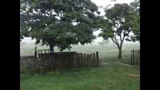 Chuva calma e serena