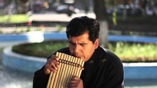 Semilla   Lagrimas de dolor HD) VIDEO OFFICIAL