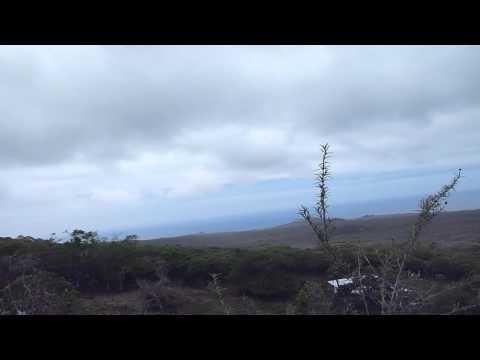 Ecuador   Galapagos   Floriana part 2