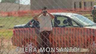 Fuera Monsanto - Perro Verde -