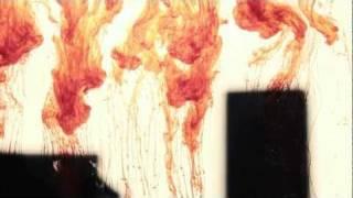 "Loxodrome - ""The Liar"" TripleCore:Music"