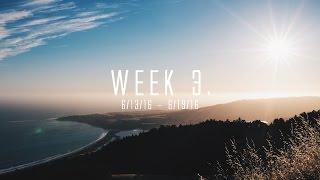 WEEK 3.