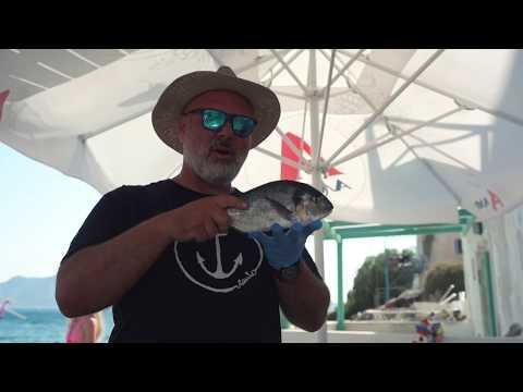 Koe kuvankaunis Santorini! - Apollomatkat