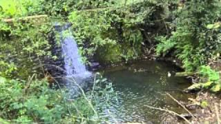 Theodorakis-Epitafios 4 & 5-John Williams