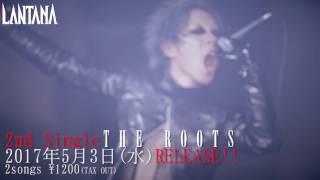 LANTANA 『PLEDGE』 MV spot. (OFFICIAL)