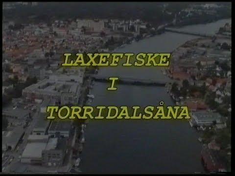 Laxefiske i Torridalsåna