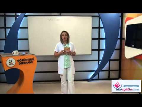 Açık Lise Türk Edebiyatı-1 Görüntülü Eğitim Seti Konu Anlatımı Demosu