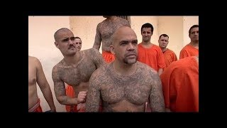 Q104: Aryan Brotherhood Prison Gang Can't Tell If You're White?