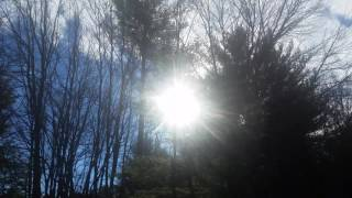 Reiki for Patience & Soul-Full Contemplation