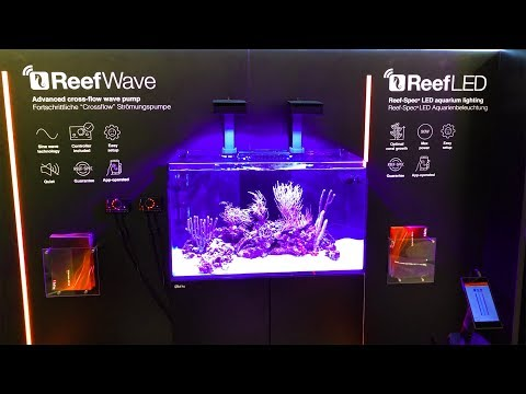 Even MORE Cool New Reef Gear at InterZoo 2018