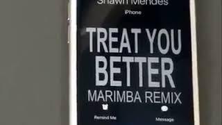 Treat you better marimba remix