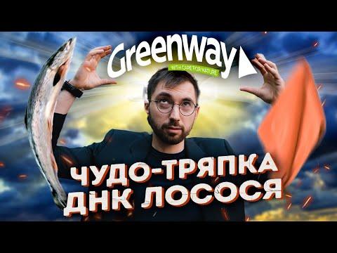 ОБМАНЕМ вас ДОРОГО! Разбор Greenway. Финансовые пирамиды