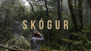 Skógur  -  (Varðeldur Video Accompaniment)