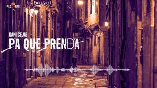 Dani Cejas - Pa Que Prenda (Flowremix 2016)