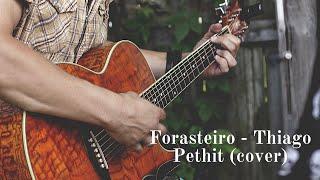 Forasteiro - Thiago pethit ( cover Pedro Lucas )