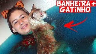 Meu Gatinho na Banheira de Gelli Baff Olha No Que Deu (Meleca, Gosma, Brincando, Funny Cat, Gel)