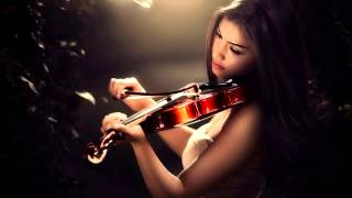 Shut Your Mouth - Pain (violin cover)