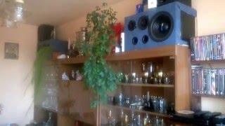 Alan Walker - Fade dobry bass na domowych Kolumnach