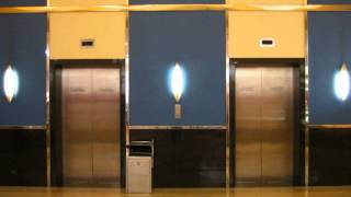 Bossanova Elevator 2 (Royalty-free music)