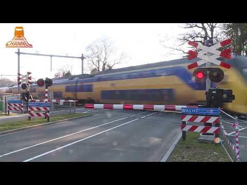 DUTCH RAILROAD CROSSING - Driebergen Rijnsburg - Arnhemse Bovenweg photo
