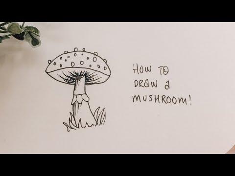 How to draw a mushroom! #shorts