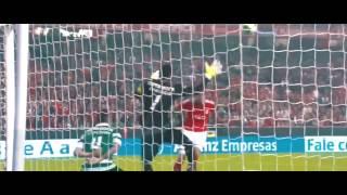 Benfica -Desabafo De Um Campeão