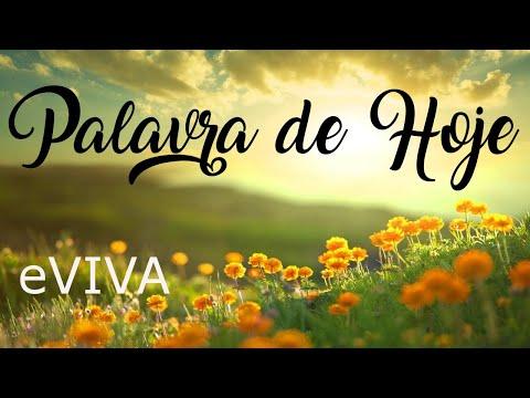 PALAVRA DE HOJE 24 DE MAIO 2020 eVIVA MENSAGEM MOTIVACIONAL PARA REFLEXÃO PROVÉRBIOS 4 BOM DIA!