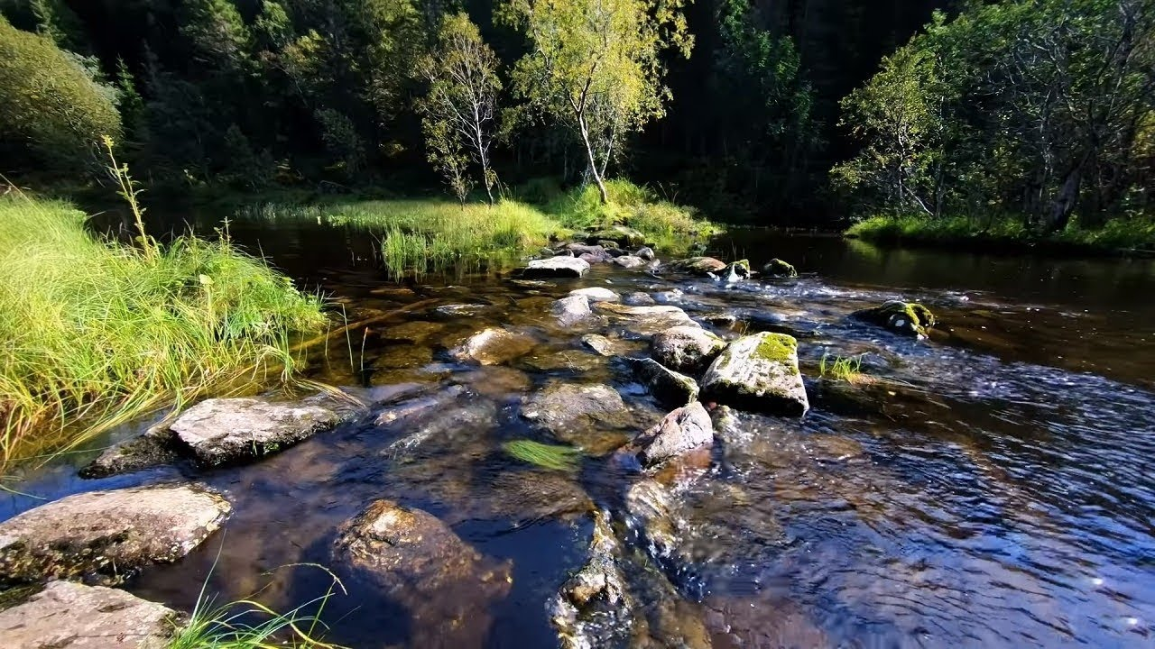Nature Sound Small River Stream