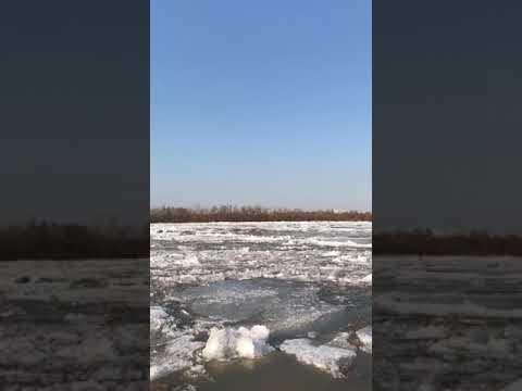 Ледоход - movimiento de hielo. 🌊❄ #shorts