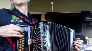 """Despacito"" Acordeon/Gaita/Sanfona"