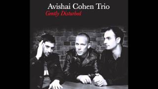 Avishai Cohen - Seattle