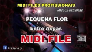 ♬ Midi file  - PEQUENA FLOR - Entre Aspas
