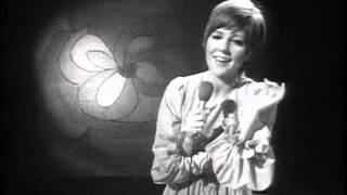 Cilla Black   Surround Yourself With Sorrow Live TOTP 1969
