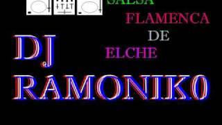 mentirosa version flamenco x dj ramoniko.wmv